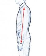 Sleeve-length-150x182